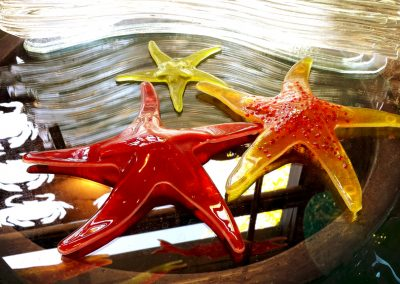 starfish_group_04