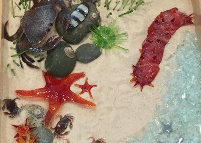 public-comm-kingston-library-in-floor-underwater-glass-garden